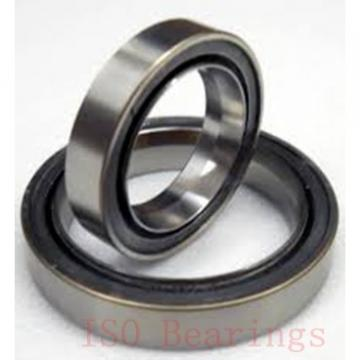 ISO GW 020 plain bearings